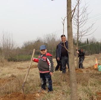 2013年植树节亲子活动一